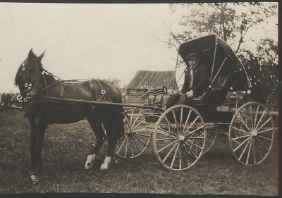Delbert Havens in horse  buggy cropped