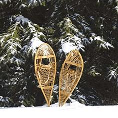 Pure Michigan snowshoeing