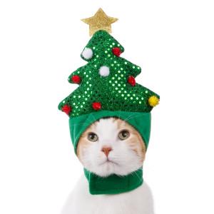 xmas tree cat hat