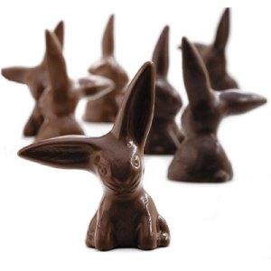 Chocolate_Bunnies