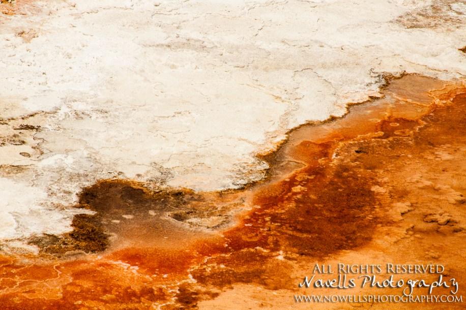 yellowstone-3_085
