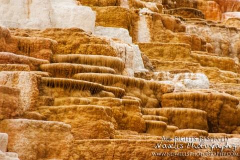 yellowstone-3_145