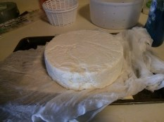 Queso fresco that has been pressed for 1 hour