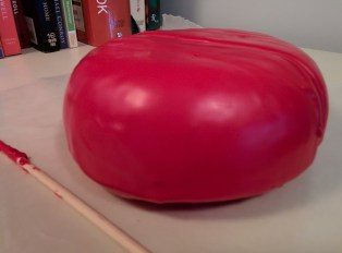 Gouda has been waxed and will age at least 3 months before we can eat it.