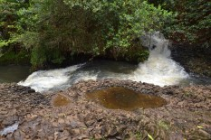 The Twin Falls of Maui