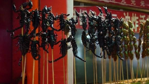 brochette de scorpions chine