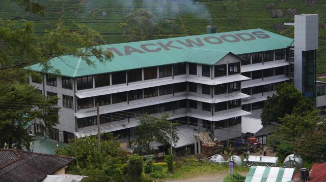 Sri Lanka: une plantation de thé et Horton Plains