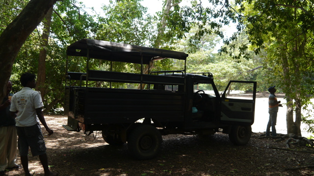 Un safari au Sri Lanka
