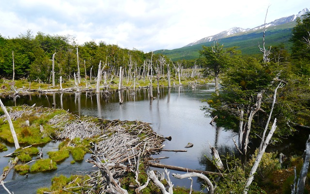 Parc National