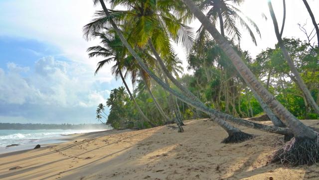 Sri Lanka 14 Septembre - Tangalle 051