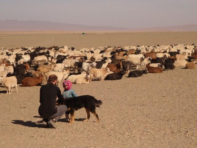 En Mongolie