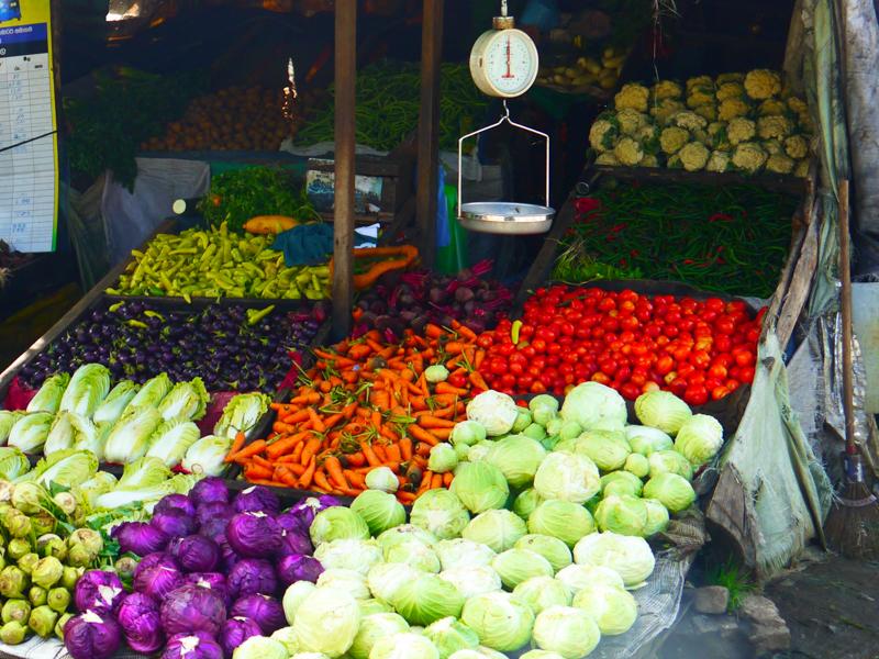Ecotourisme au Sri Lanka (3 sur 5)