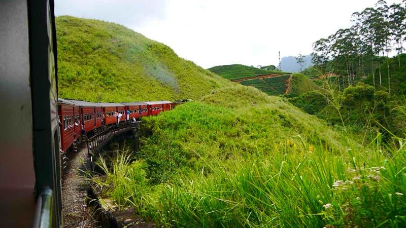 Voyage au Sri Lanka (5 sur 14)
