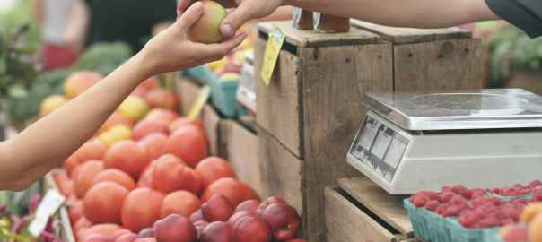 How Much Should You Spend On Groceries? Optimize Your Expenses! by Now Now Express