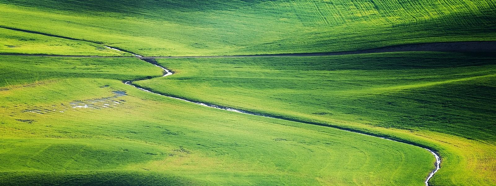 Podcast #21 – O roli lidera w ekologii z Agnieszką Zdunek