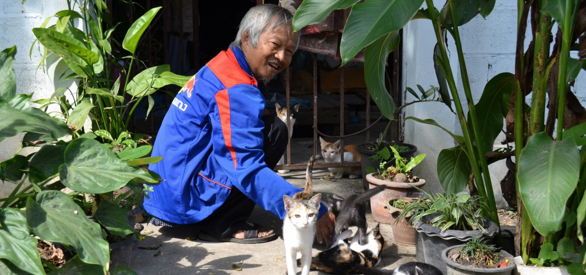 chiang-mai vieillard-chat-noworries