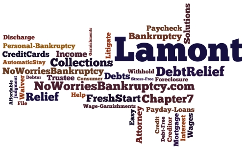 Lamont bankruptcy attorney