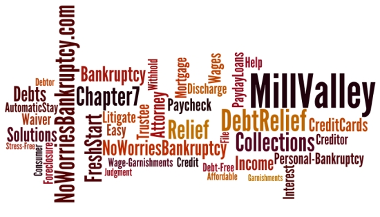 Chapter 7 bankruptcy lawyer in Mill Valley