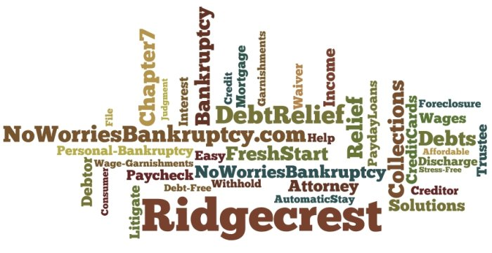 Affordable debt relief law firm