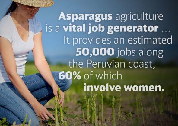 Asparagus and Jobs