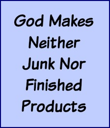 God makes neither junk nor finished products.