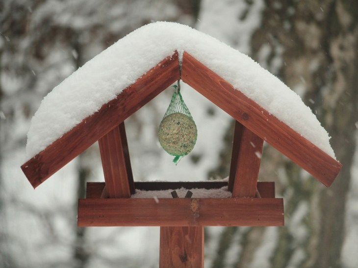 karmnik-zima-1