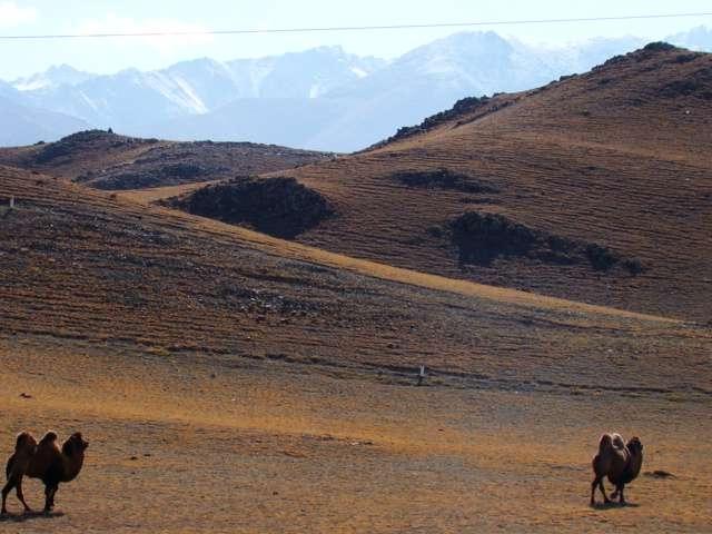 Radreise von Bishkek nach Chengdu