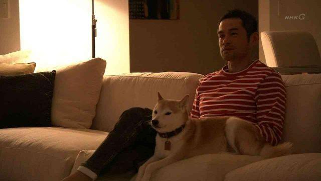 【悲報】イチローの愛犬、一弓が………