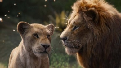 Photo of Lion King 2019 scored so low in reviews because Simba wasn't gay in the live action remake