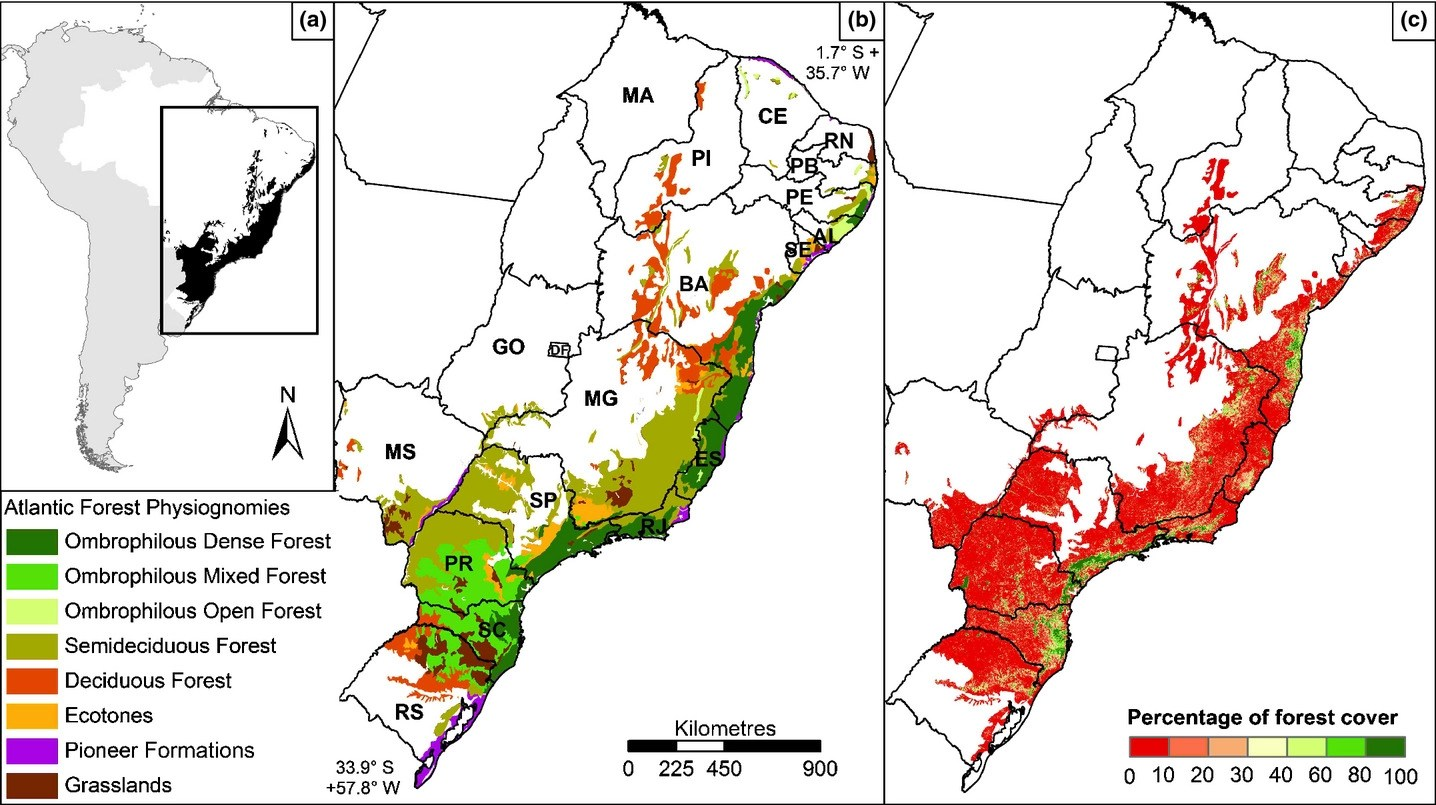 Brazil's atlantic forest is one of the most biologically diverse places on earth. Experiences From The Brazilian Atlantic Forest Ecological Findings And Conservation Initiatives Joly 2014 New Phytologist Wiley Online Library