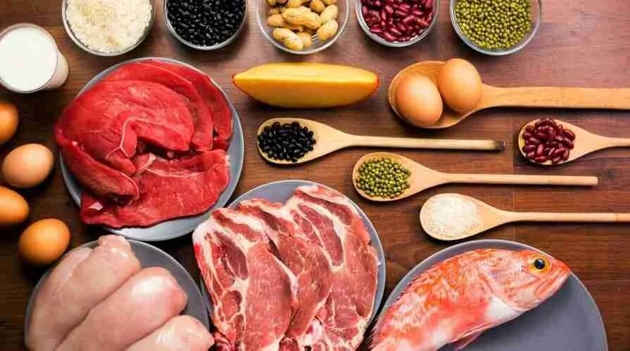 Questa immagine ha l'attributo alt vuoto; il nome del file è alimenti-con-proteine.jpg
