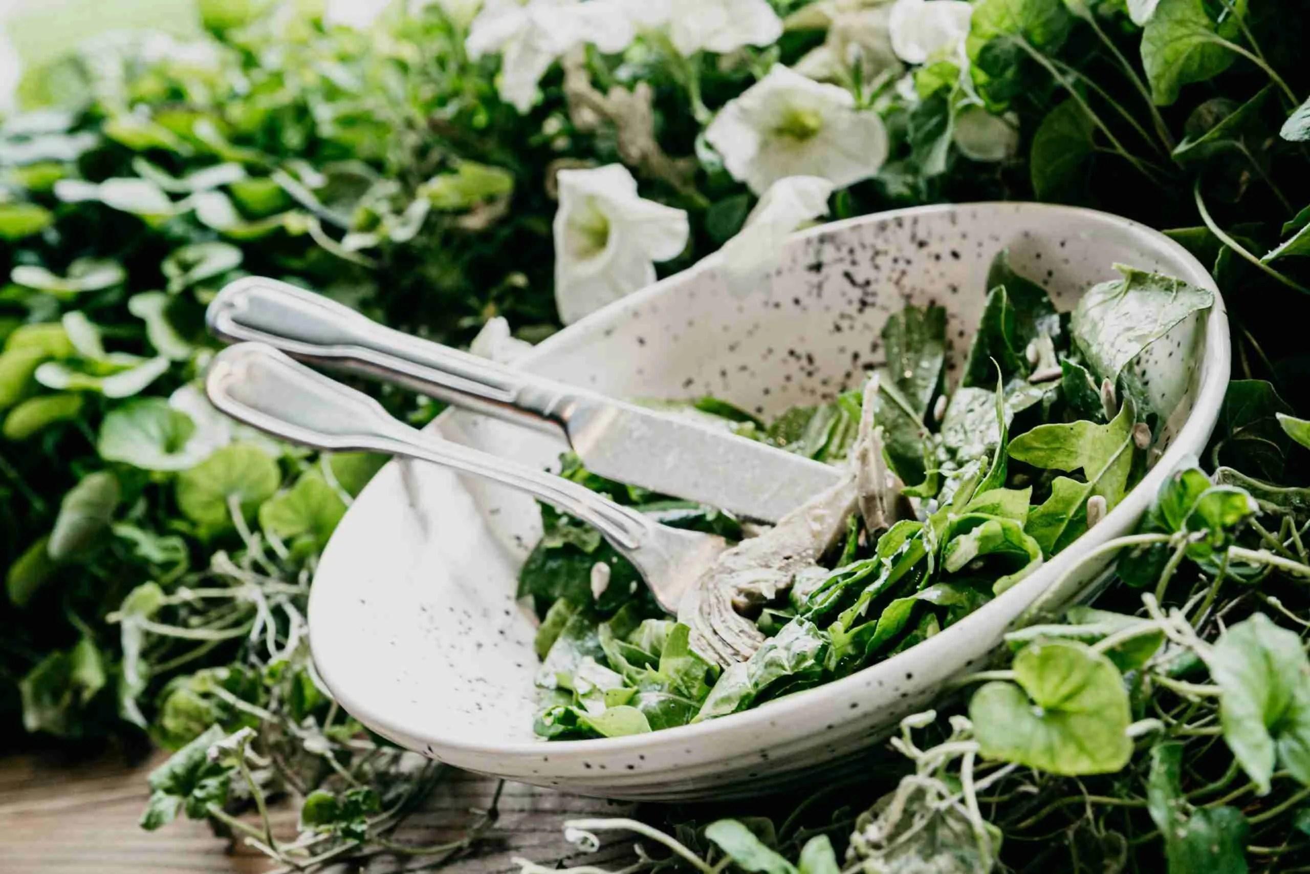 Read more about the article I verdi alcalinizzanti. Ecco i 15 migliori bio-elementi verdi