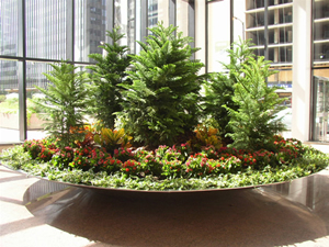 Plant Rentals  Landscaping and Design   Chicago  IL   Chicago Interior Plant Rentals and Design   N P K Associates  Inc