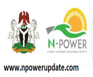 NEXIT: List of CBN Empowerment Programmes for Exited Npower Beneficiaries