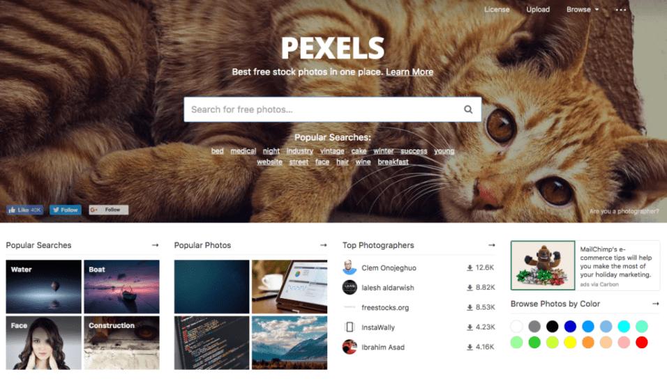 Pexel - free stockimages