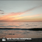 Beta Testing WordPress for WP4Good Club
