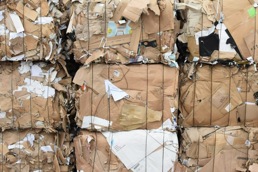 Hey Lincolnites, recycle that cardboard!