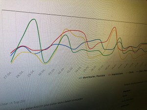 SEO-Analyse für unseren Kunden njushi - NOTREAL! - Digitale Kommunikation