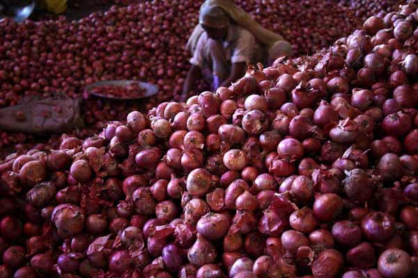 To boost exports; Govt scraps minimum export price on onions