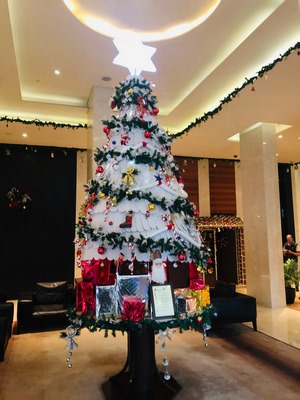 DOUBLETREE BY HILTON PUNE CHINCHWAD CREATED AN ECO-FRIENDLY CHRISTMAS TREE