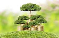 What are the Best Investment Options for NRI to Grow Wealth in India?