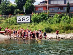 Rheinschwimmen Start 2014