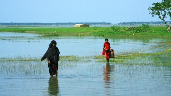 Tv-aksjonen, P3-aksjonen, Care, Bangladesh (Foto: Jøte Toftaker, NRK P3)