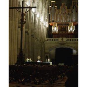 Adoremos (Oración Joven con el Obispo) @ Catedral de la Almudena | Madrid | Comunidad de Madrid | España