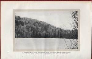 "From Fernow, 1912. ""Mixed forest, Sugar Maple, Yellow Birch, Beech, red Spruce with Fir on the margin ofthe lake. Nearly three-fourths of the forests of Nova Scotia are of this type."
