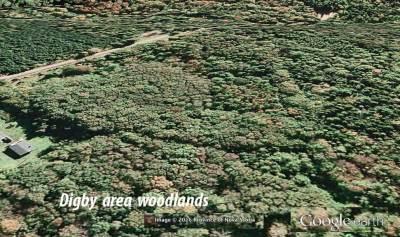 digbywoodlands