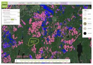 Recent and planned clearcuts on Crown land NE of Halifax Airport