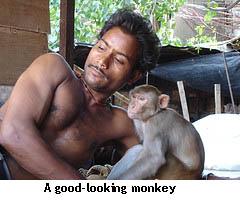 Monkey1_3