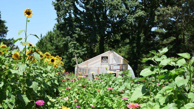 Courtesy of Well Fed Garden—Courtesy of Well Fed Garden