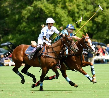 5th Annual NSLM Polo Benefit Match, 2015 Photo credit: Douglas Lees